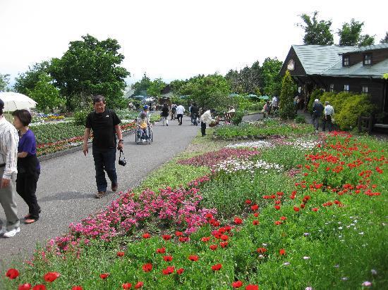 Kuju Flower Park: 公園内