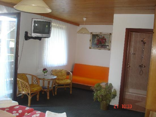 Penzion Apartmaji Preseren: room
