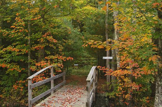 Purity Spring Resort: Adjacent to Purity Spring is the NH Hoyt Audubon Wildlife Sanctuary featuring miles of hiking tr
