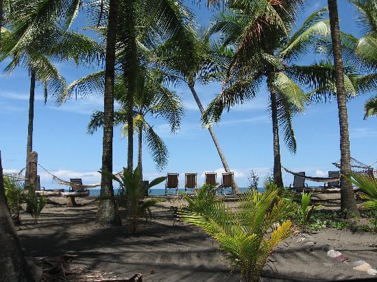 Hotel La Tranquilidad: beach