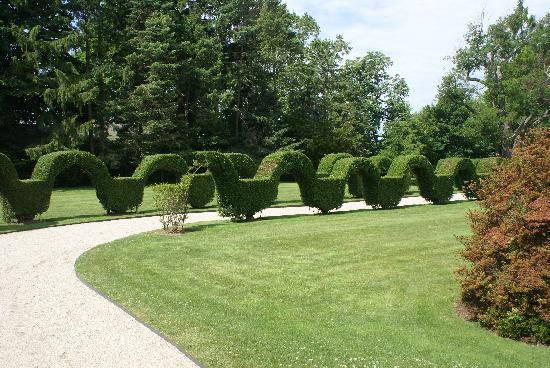 Geometric Hedges - Picture of Green Animals Topiary Gardens ...