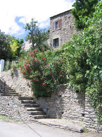 Maison Borghetti
