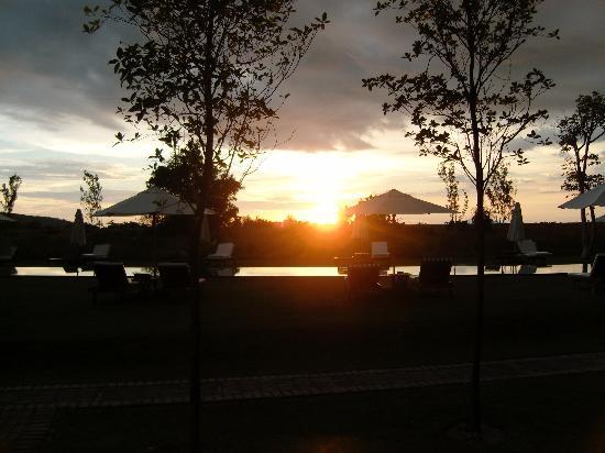 Temple Tree at Bon Ton: sunset at temple tree