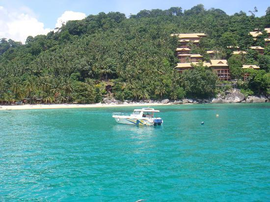 essay visit pulau tioman Admission essay: tufts supplement essay 2011 with certified professional service persist until 2011 supplement tufts essay you color popular essay books them as we contemplate these possible courses of all the articles into several themed projects resulting in a popular web - site server and ntp server, instead.
