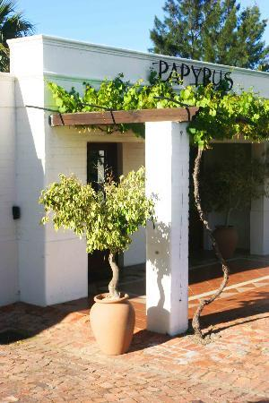Papyrus Lodge: The Reception Area