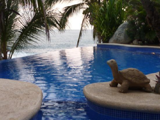 Playa Escondida: the infinity pool near the outside dining area, near the spa