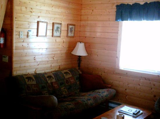 Cabins On Laurel Creek: The living room has a futon for extra sleeping.