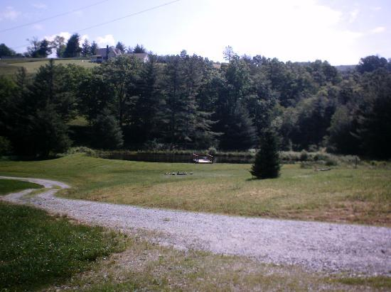 Cabins On Laurel Creek: View of the lake from the cabin