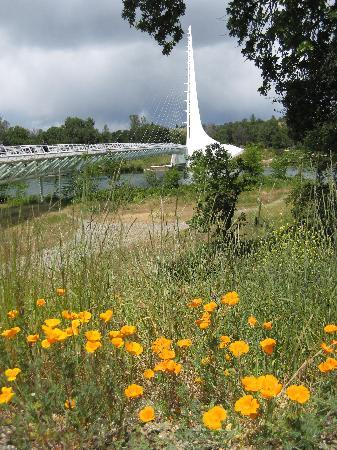 Redding, Californien: Sundial Bridge