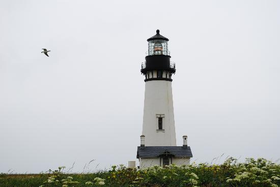 ‪Yaquina Head Outstanding Natural Area‬