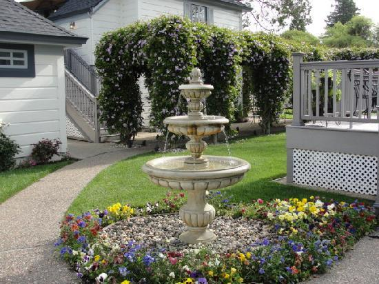 Arbor Guest House: Backyard view with fountain