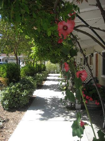 Meadowlark Inn: Pretty walkway