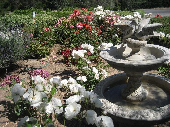 Meadowlark Inn: Beautiful fountain