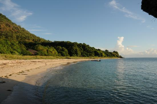 Alor Divers Eco Resort: private beach of the resort