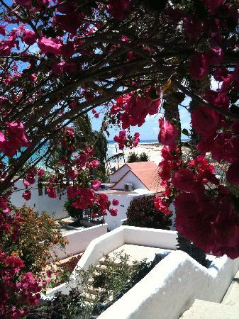 Aldiana Fuerteventura: Clubanlage