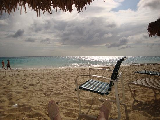 Aruba Beach Club: Beautiful Beach