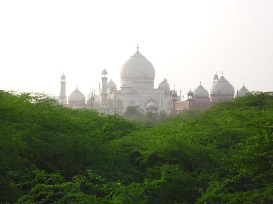 Taj Mahal: Taj vomn Taj Nature Walk