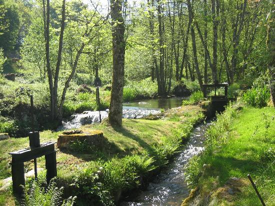 Moulin des Morvans : L'Yonne longe la propriété