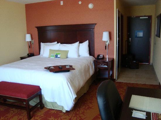 Hampton Inn & Suites Denver Highlands Ranch : King room