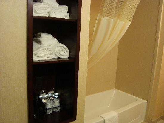 Hampton Inn & Suites Denver Highlands Ranch : Bathroom