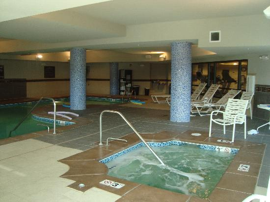 Hampton Inn & Suites Denver Highlands Ranch : Pool & hot-tub