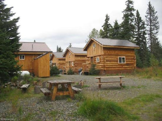 Sleepy Bear Cabins: Quiet and private picnic area with fire pit