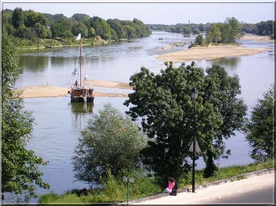 Candes-Saint-Martin, فرنسا: Les îles du confluent