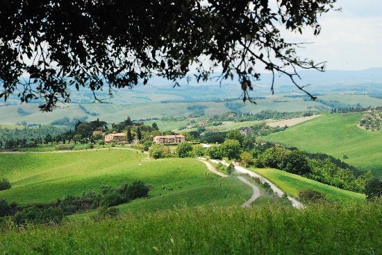 Fattoria Pieve a Salti: la fattoria da lontano