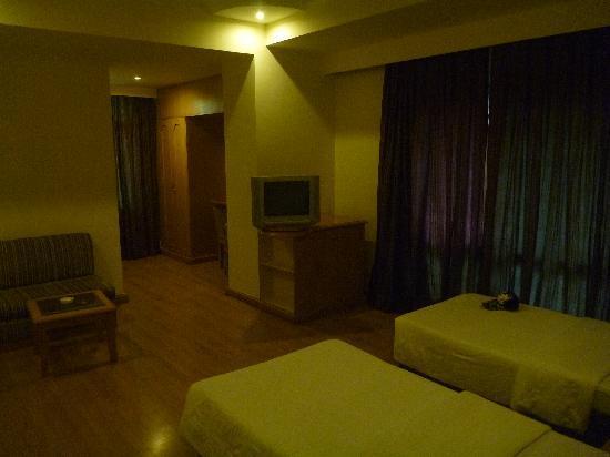 Hotel India Varanasi: 部屋は広くて清潔