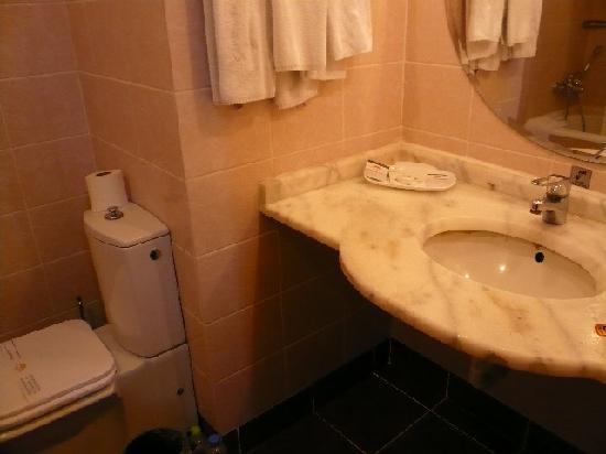Buyuk Anadolu: 洗面 トイレ