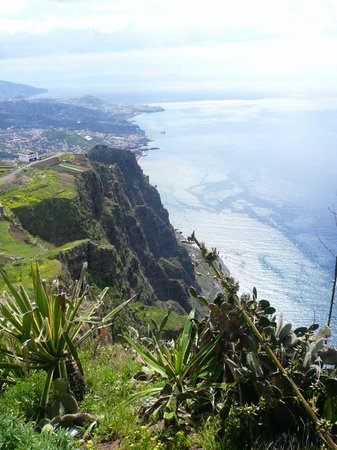 Madeira Islands, โปรตุเกส: Cabo Girao cliffs - one of the highest in the world