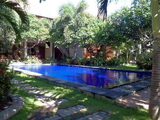 Liberty Dive Resort: Tuin met zwembad