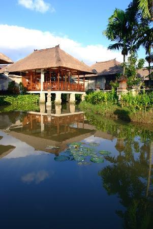 Santi Mandala : The lily pond villas