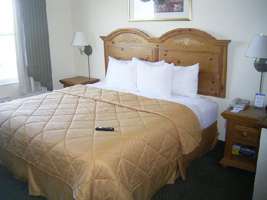 Quality Inn & Suites I-35 / Walnut Hill: Bed