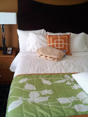 Fairfield Inn & Suites Rockford: My room,  Beautiful and comfortable