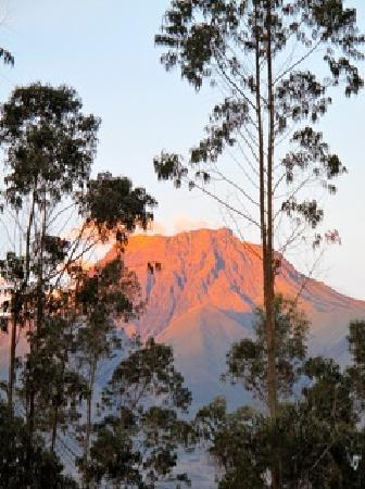 Ali Shungu Mountaintop Lodge: Volcano View from our window