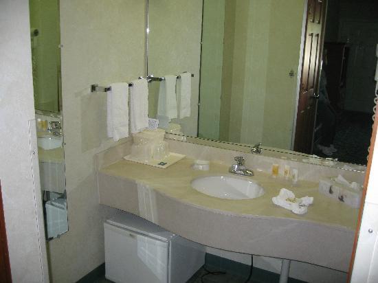 Quality Inn Lake George: Washroom