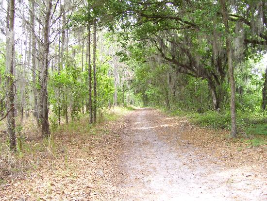 Dover, FL: Covered area of the trail