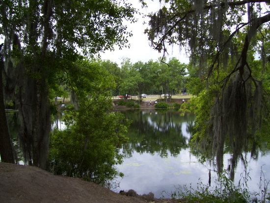 Dover, FL: Lake near the Hwy 60 entrance