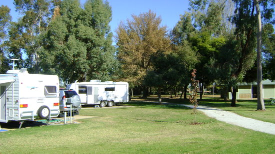 Cobram, Austrália: Spacious caravan sites in beautiful park setting