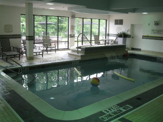 Fairfield Inn & Suites Pittsburgh Neville Island: Pool