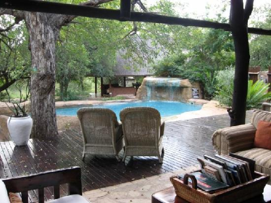 Thornybush Private Game Reserve, Afrique du Sud : pool side