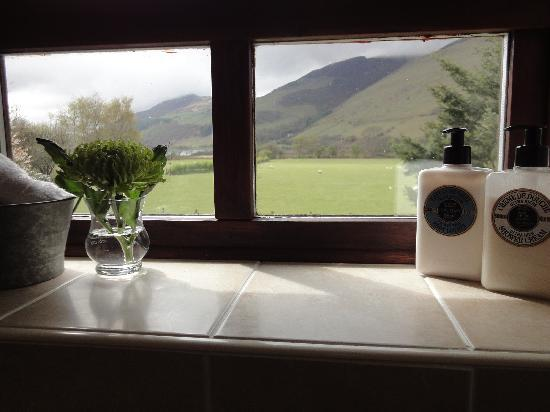 Dolffanog Fawr: View from Dyfi Room bathroom