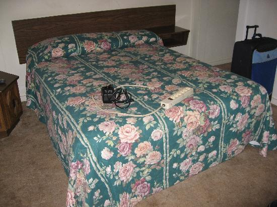 Lincoln Motel : Bed was dirty but comfortable