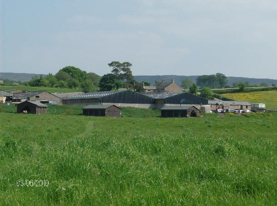 Feather Down Farms at Dolphinholme: The farm from across the field