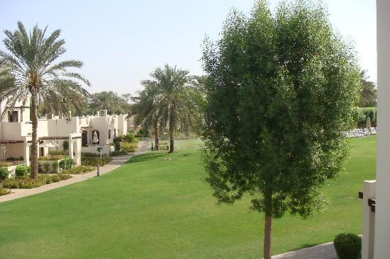 Hilton Al Ain: lawn