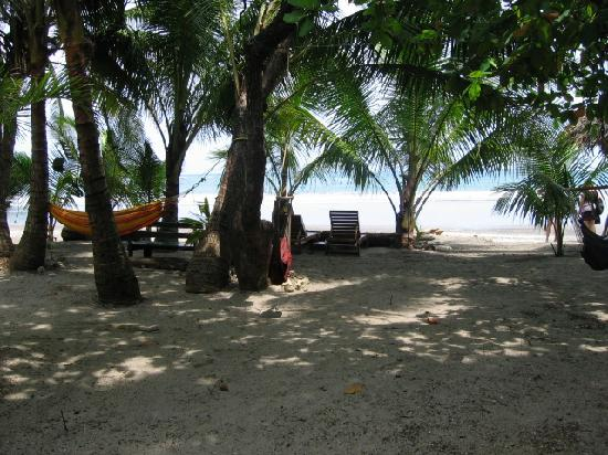 Fenix Hotel - On The Beach: View from outside our door