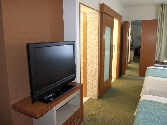 SpringHill Suites Detroit Metro Airport Romulus: Flat TV - separates WC - separates Bad