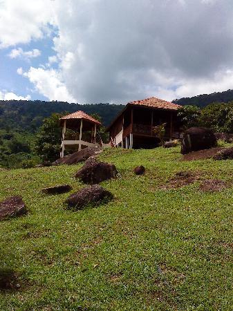 Phanom Bencha Mountain Resort: lush