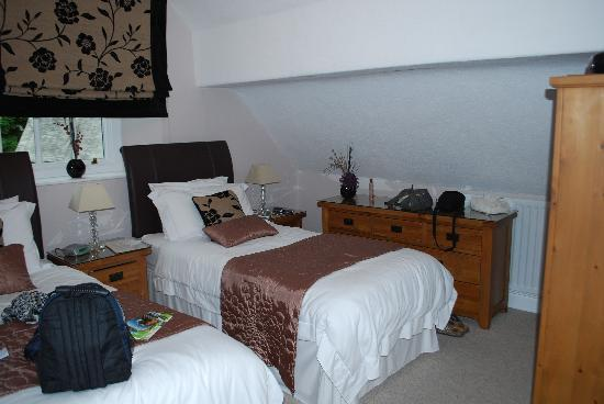 Fair Rigg Guest House: The twin room